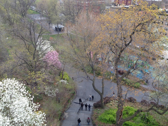 An April morning in Morningside Park.